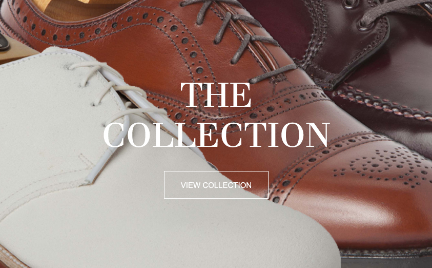 PSD-Alden-Shoes-Top-Left-2